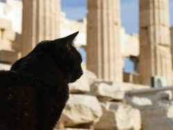 ATHENS for First-Timers - Beyond the Acropolis
