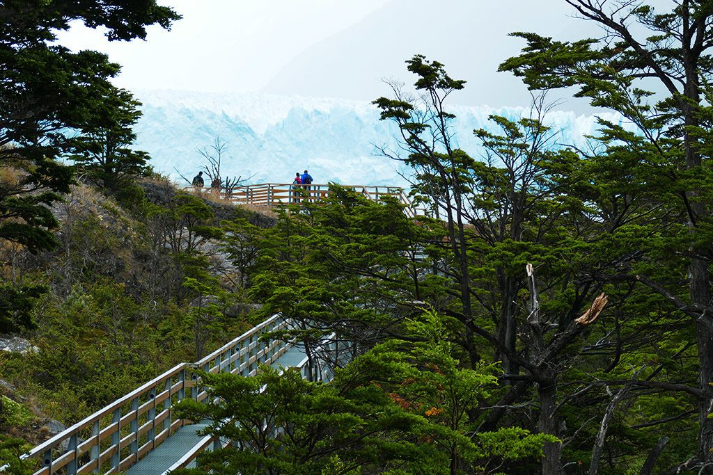 Trails at Perito Moreno