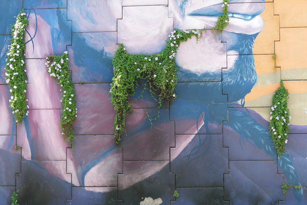 Detail of a fantastic mural on Padre Carlos Mugica street