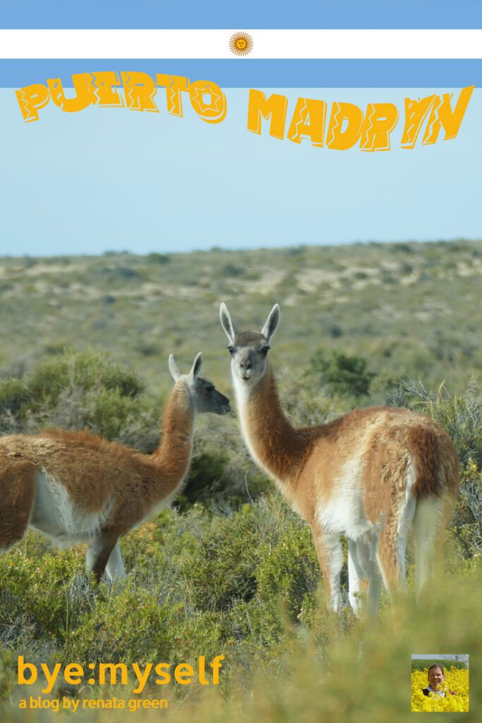 Pinnable Picture for the Post on Puerto Madryn