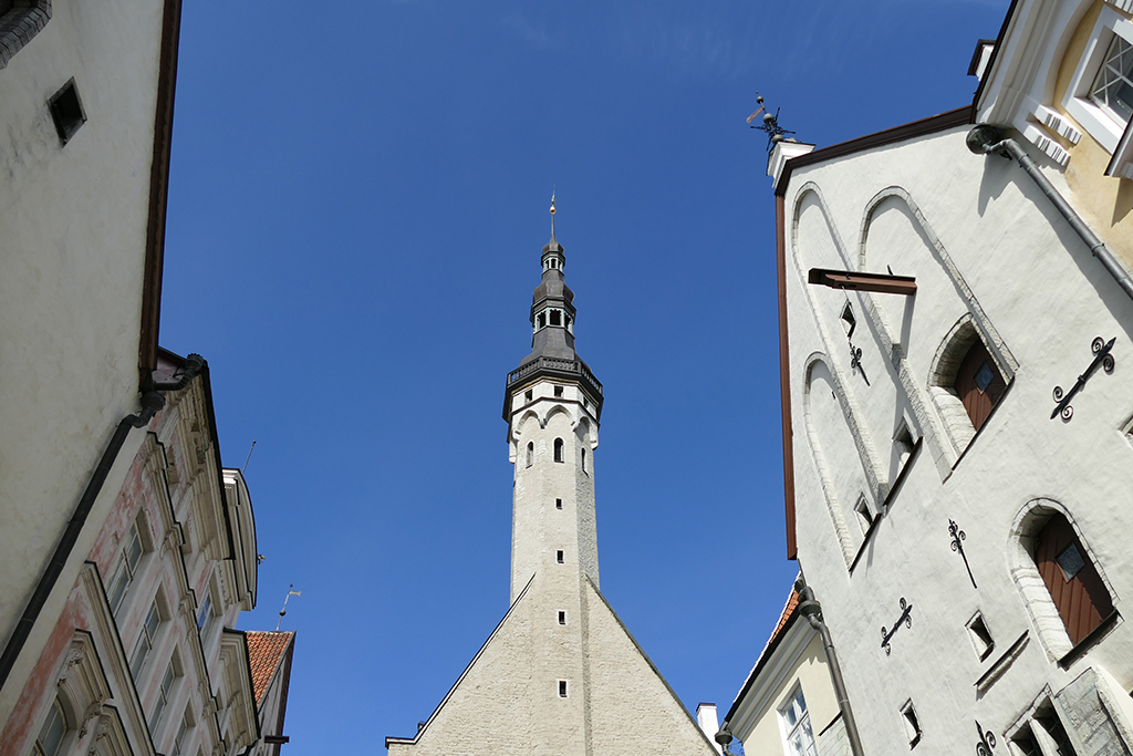 Raekoja torn in Tallinn, the city between the poles of history and creativity