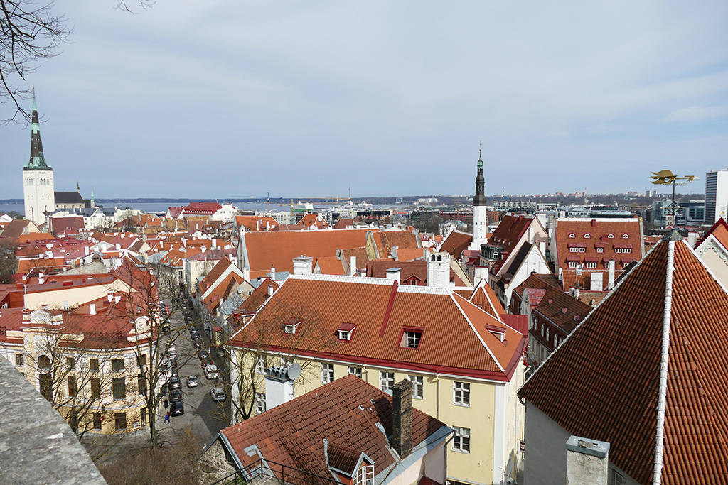 View of Tallinn, the city between the poles of history and creativity