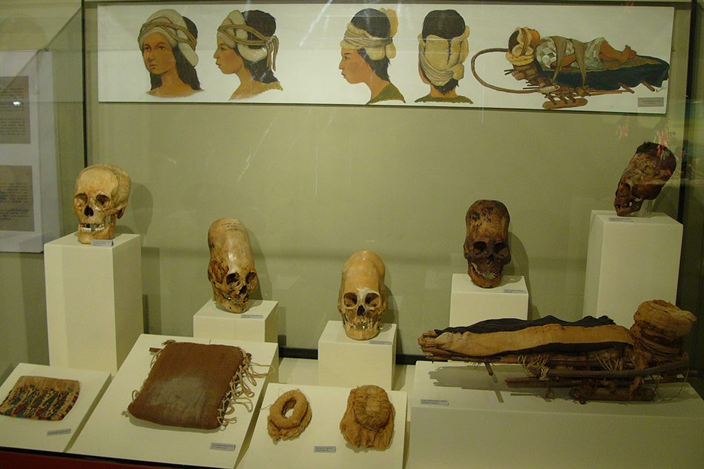 Skulls at the Museum in Ica, introduced in the guide to Ica and Huacachina