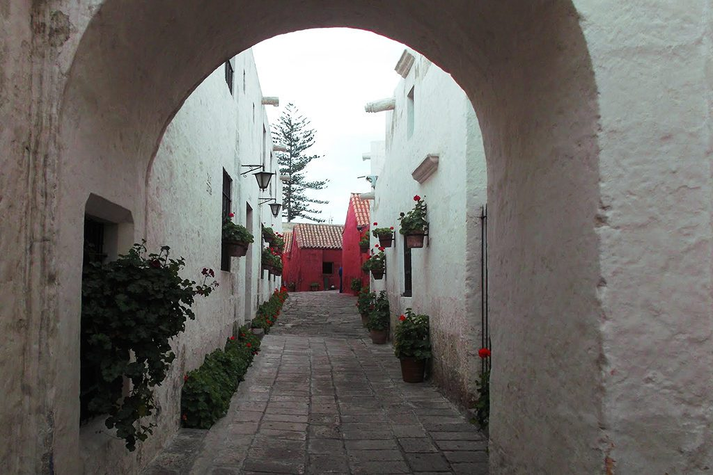 White ashlar masonry with red geraniums at the Santa Catalina Monastery, introduced in the guide to Arequipa and the Colca Canyon.