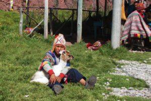 Little Peruvian Boy Holding a Llama