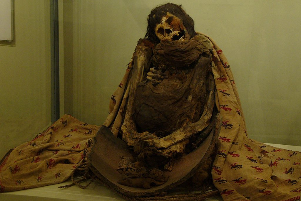 Mummy at the Museum in Ica in Peru