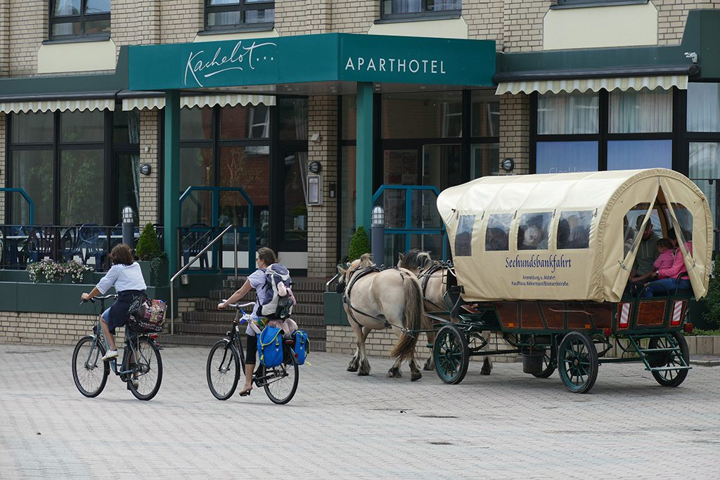 Bicycle and Horse Carriage on Borkum