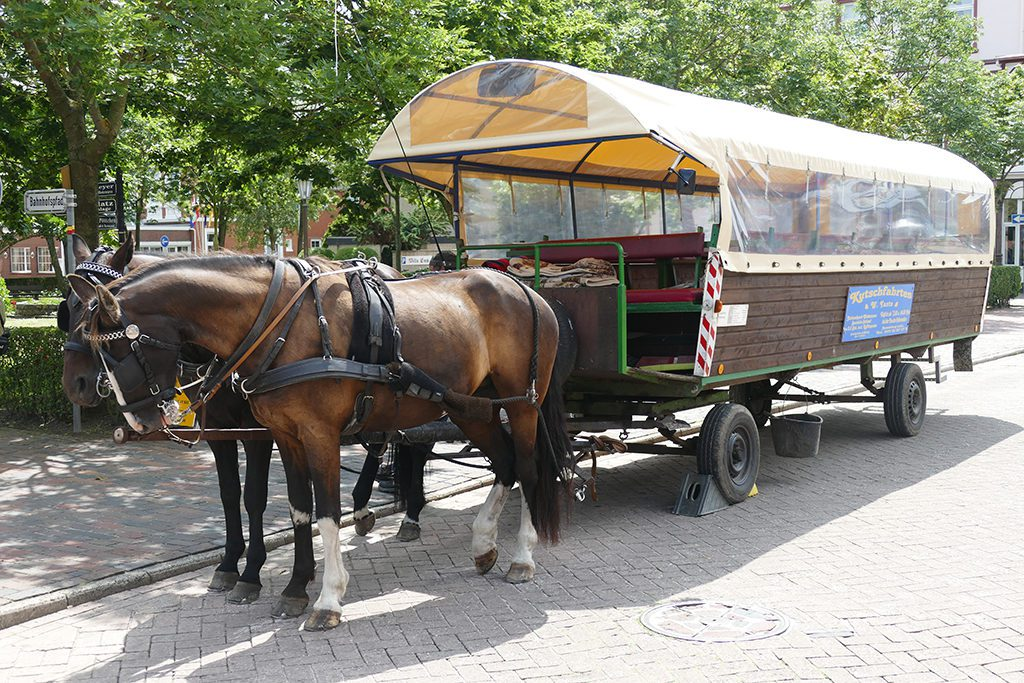 Horse and carriage at Borkum