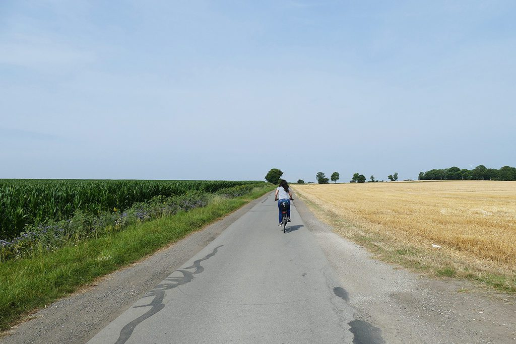 Cycling from eatery to eatery on the island of Fehmarn when not going by Van