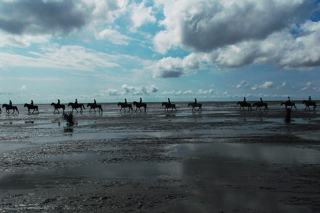 Riders on the mudflat between Cuxhaven and the Island of Neuwerk in Germany