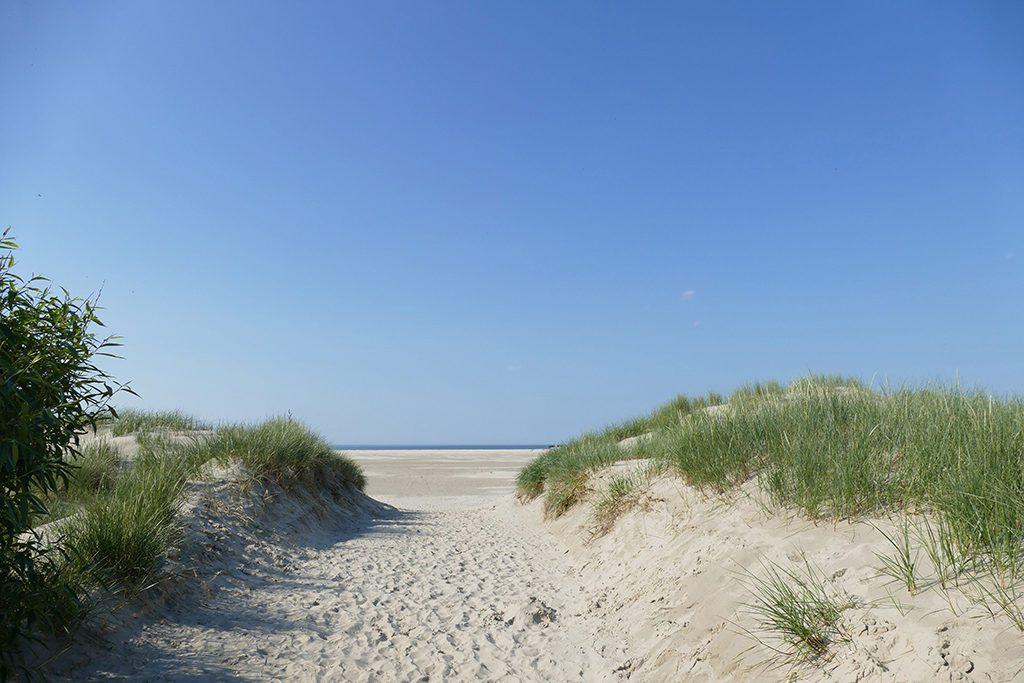 Dunes on the Island of Borkum in Germany