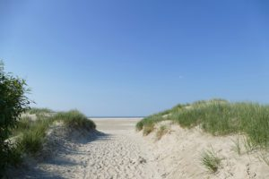 Dunes on the Island of Borkum in Germany