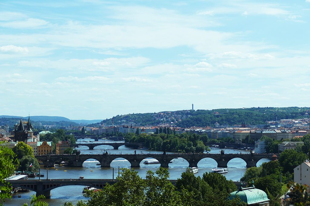 Bridges seen from the Letenský Profil