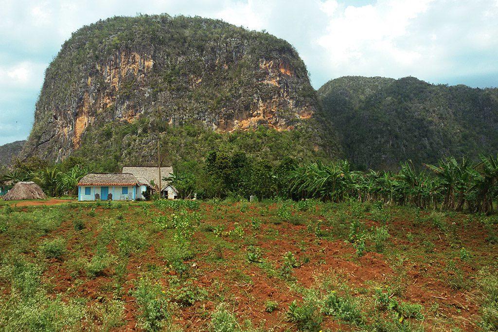 House and mogote at Vinales, Cuba 's Rural Paradise