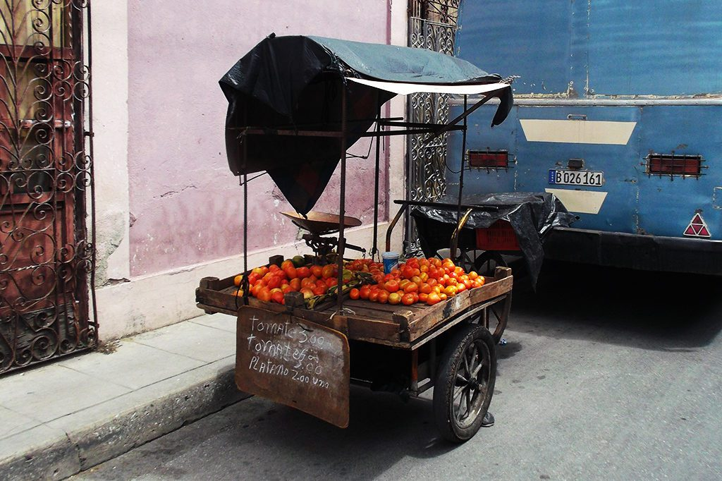 Cart with tomatoes