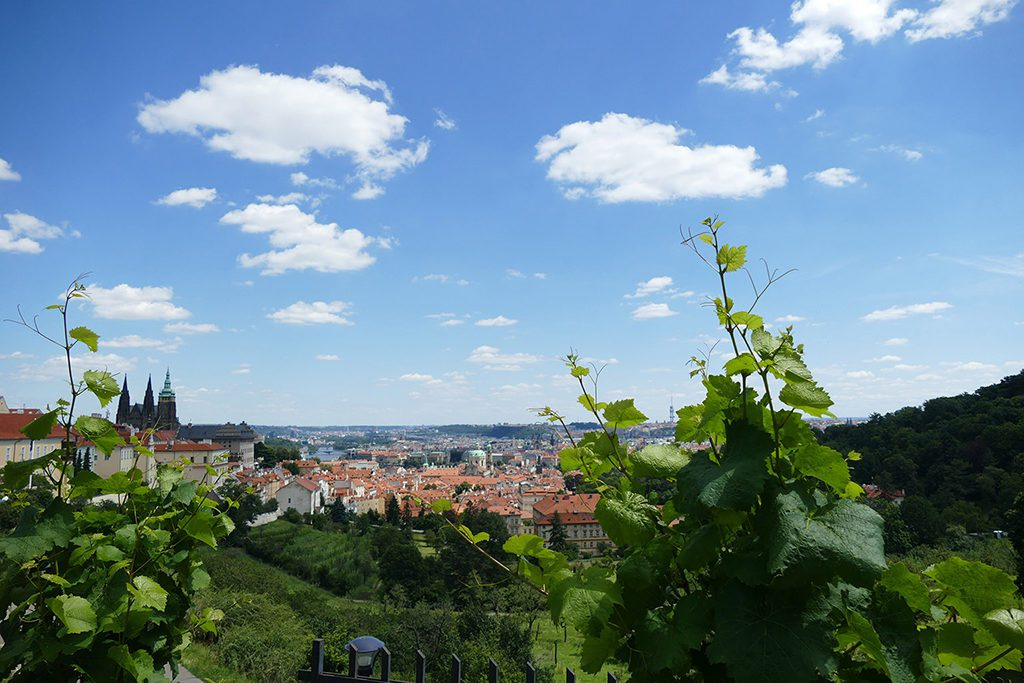 View of Prague from the Strahov Garden Viewpoint