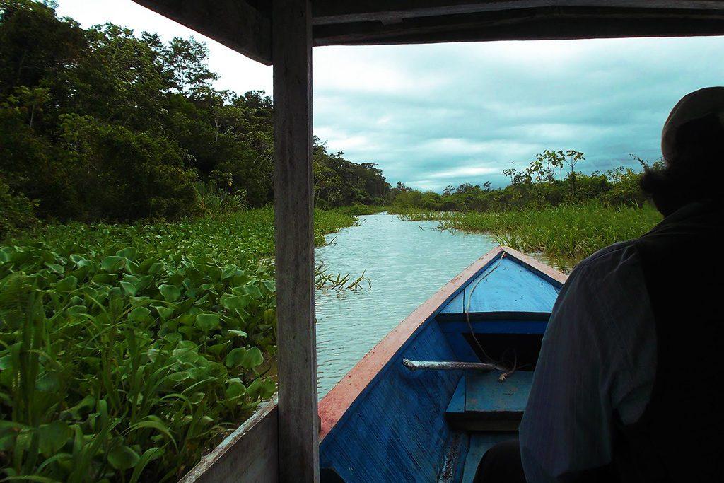 Gliding down the bayou at the Yarinacocha lagoon