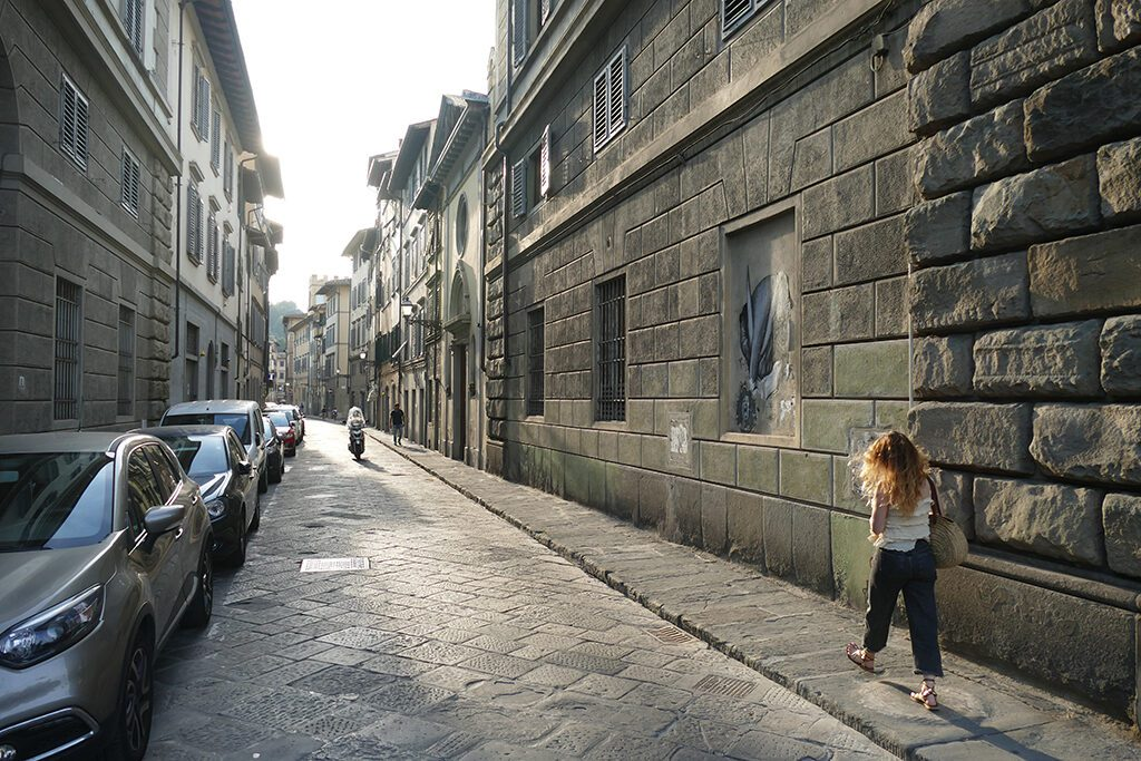 Street view in FLORENCE - Home of the Medici, Cradle of the Renaissance