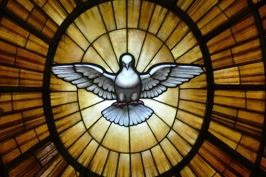 Dove on an alabaster window at the Staint Peter's Basilica in Rome.