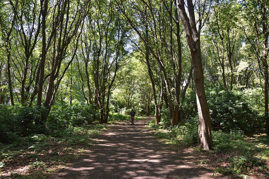 Park in Malmö