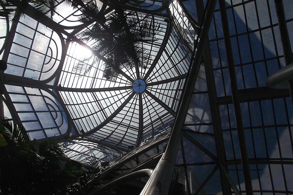 Inside Curitiba's palm house at the botanic garden, that became the city's logo.