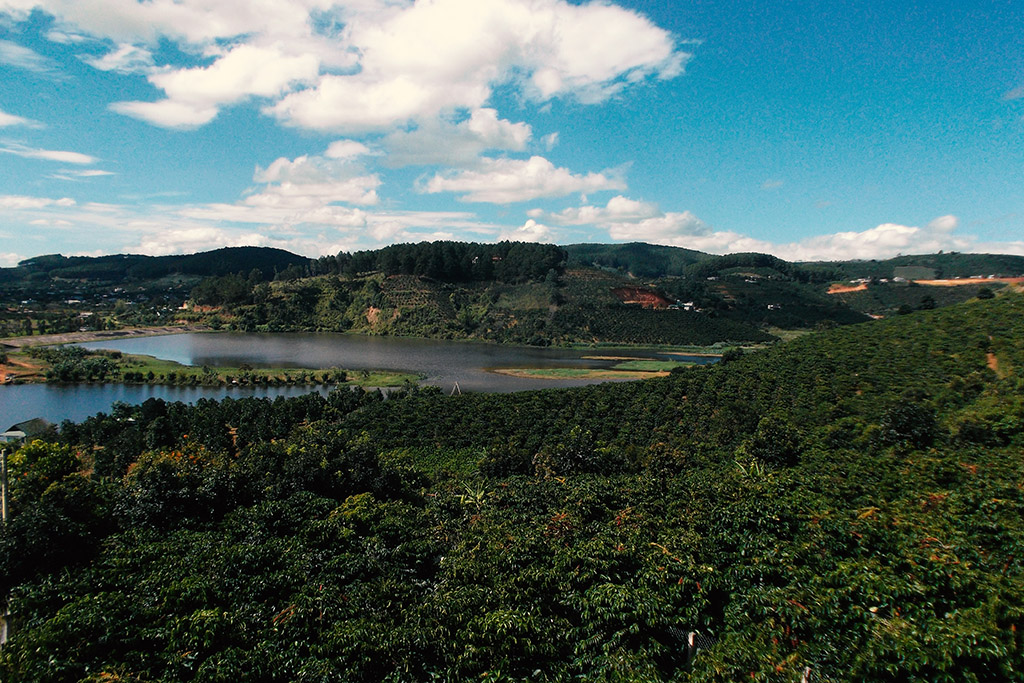 View of the surroundings of the K'Ho coffee farm on the outskirt of Da Lat in Vietnam.