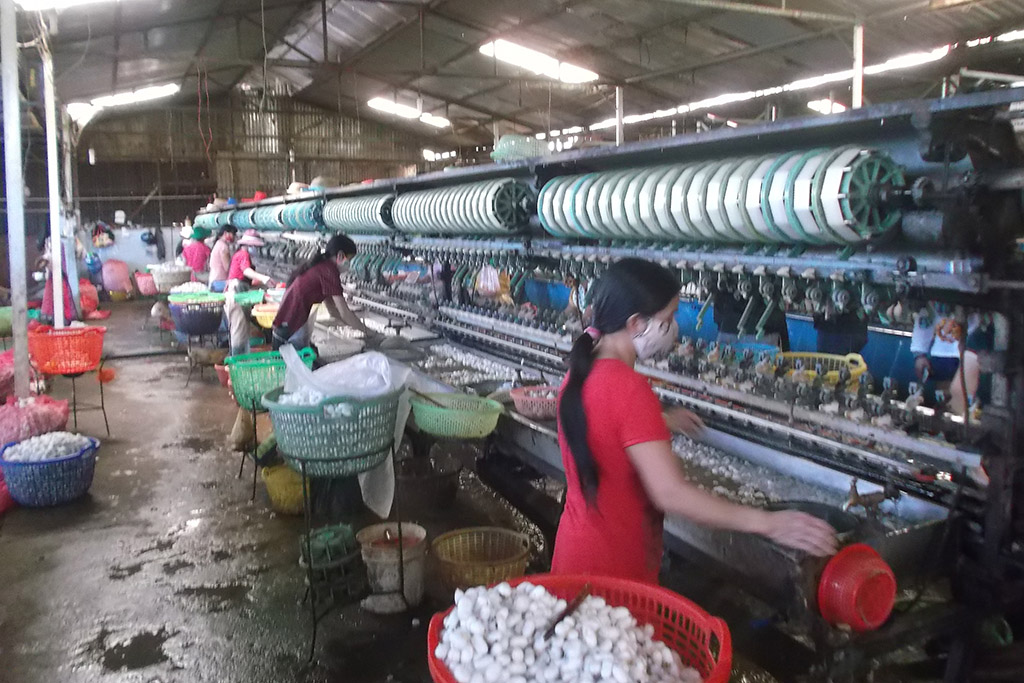 Silk factory on the outskirts of Da Lat in Vietnam