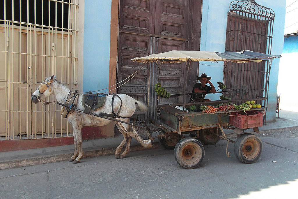 Man with cart and donkey at Trinidad, Cuba's Colonial Fantasy