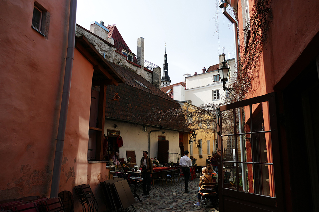 Backyard in Tallinn, the city between the poles of history and creativity
