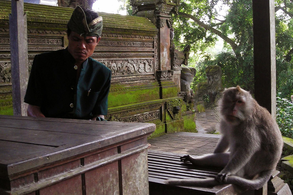 Guard and monkey at the Monkey Forest in Ubud