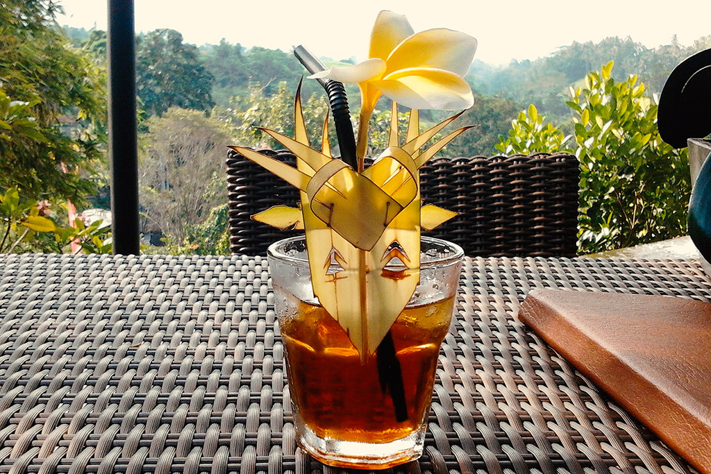 Drink at the Blanco Renaissance Museum in Ubud