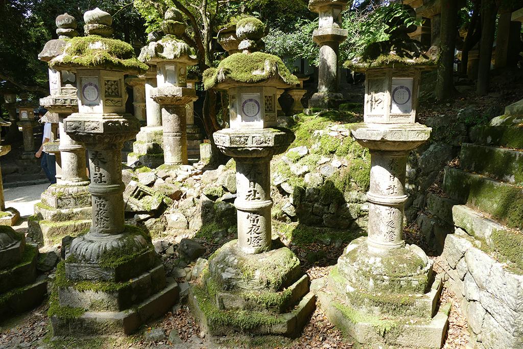 Stone Lanterns at Nara