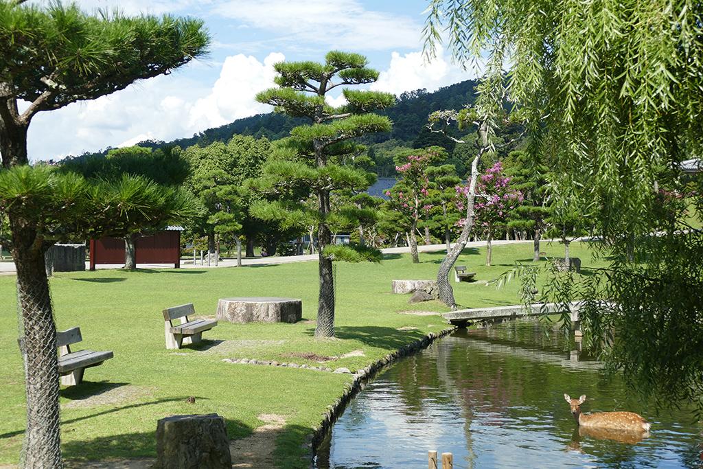 Park in Nara