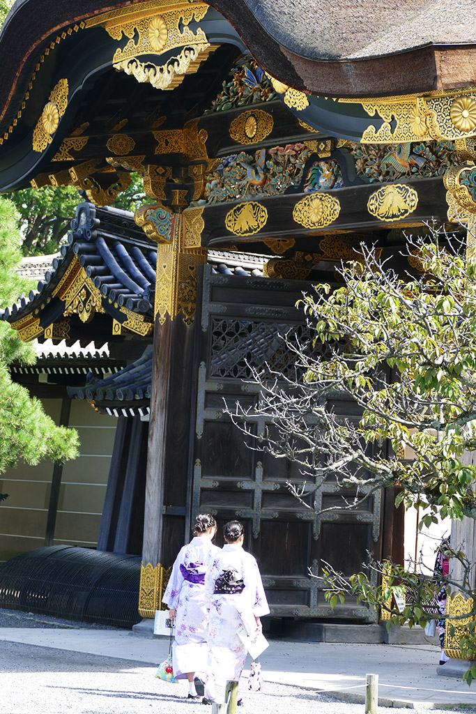 Geishas at the Nijo Castle in 4 Days Kyoto Treasure Box of Japan