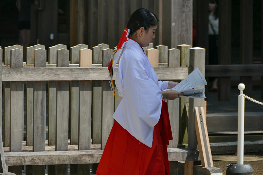 A temple girl sashaying across the premises of the Meiji Shrine