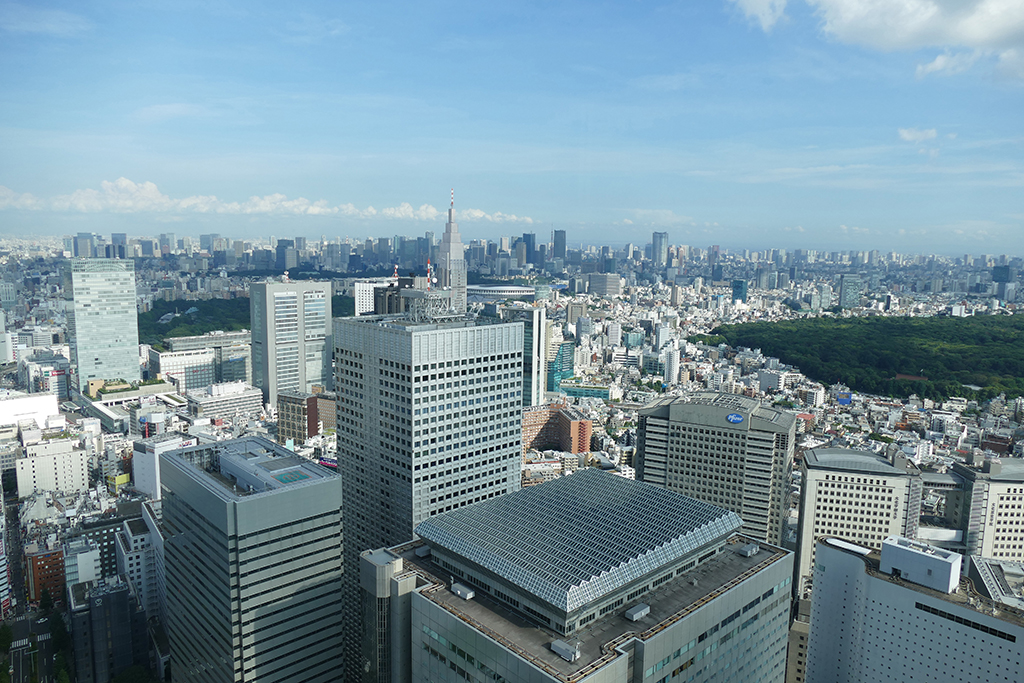 View from the Metropolitan Government Building in Tokyo