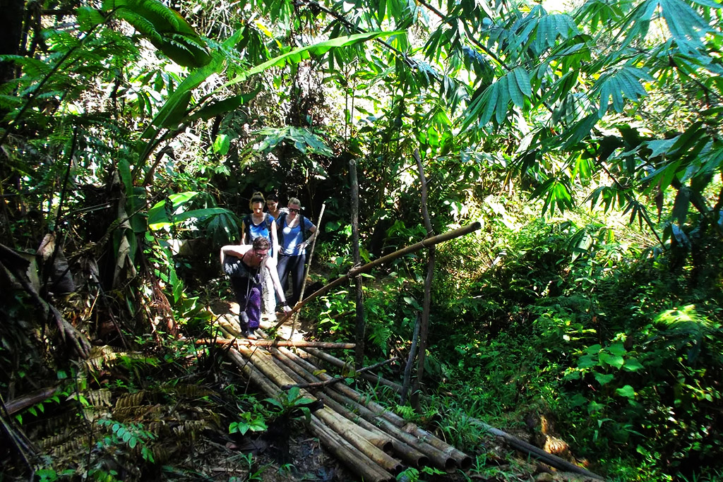 People crossing a wooden bridge in the Cameron Highlands of Malaysia