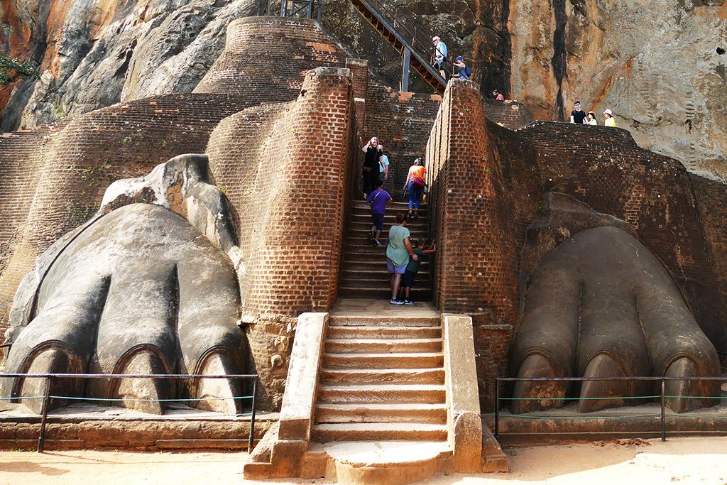 Paws at the Sigiriya Lion Rock Sri Lanka