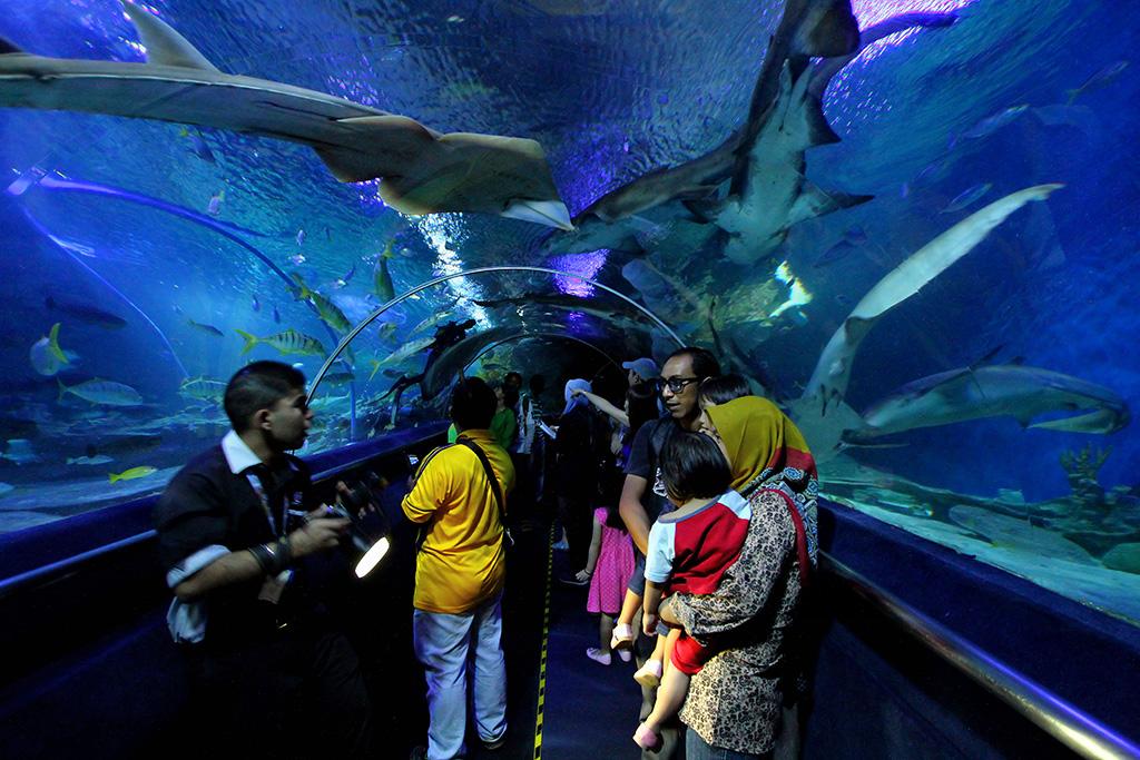 Family visiting Kuala Lumpur's Aquarium