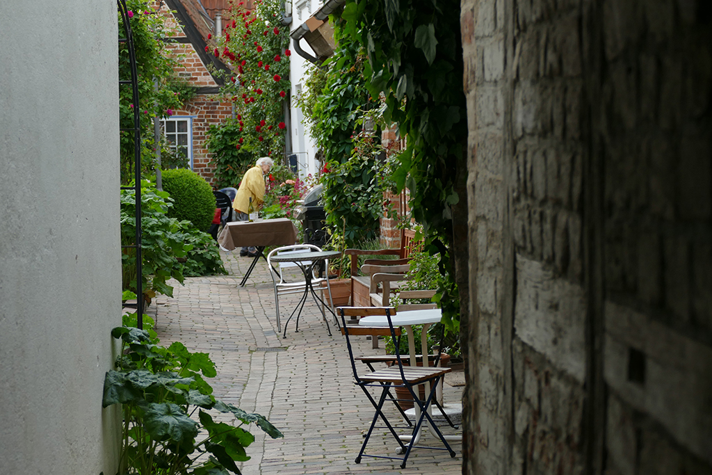 A lady minding her beautiful roses in one of the court yards of ravishing Luebeck