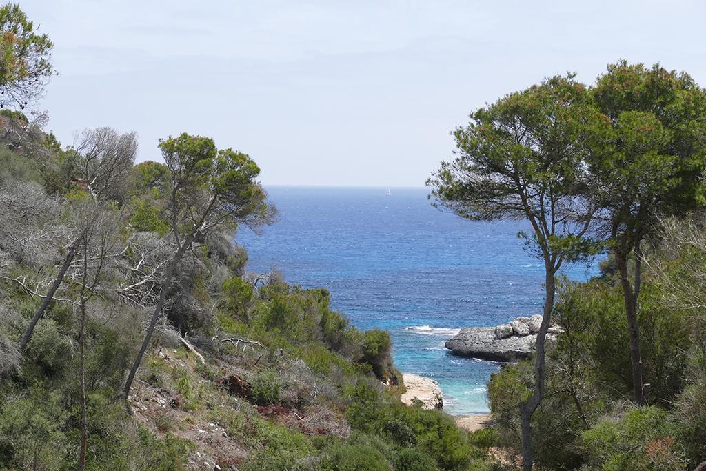 Cala Macs on Mallorca's East Coast