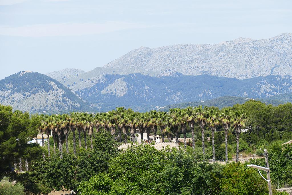 Scenery around Alcúdia