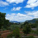 Hiking the Circular Trail Around PUIGPUNYENT
