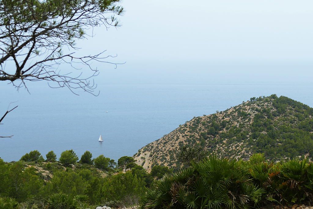 View of the sea on a hike from Port d'Andratx to Sant Elm