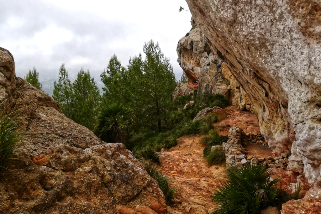 Trail on the Andratx Sant Elm Hike