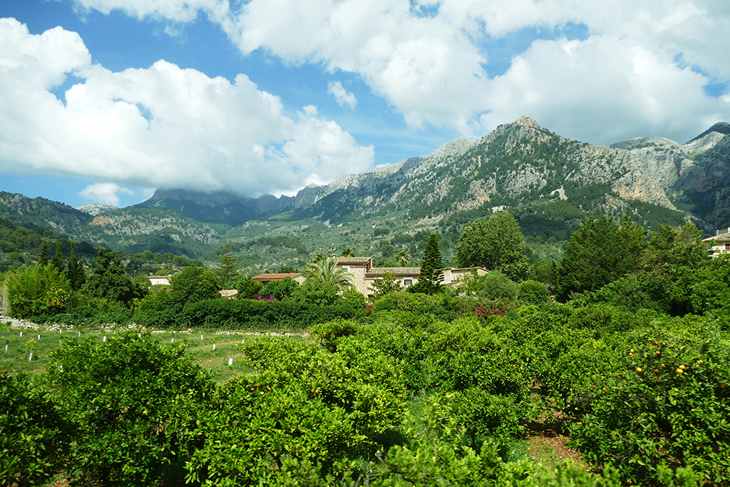 Valley close to Fornalutx on Mallorca