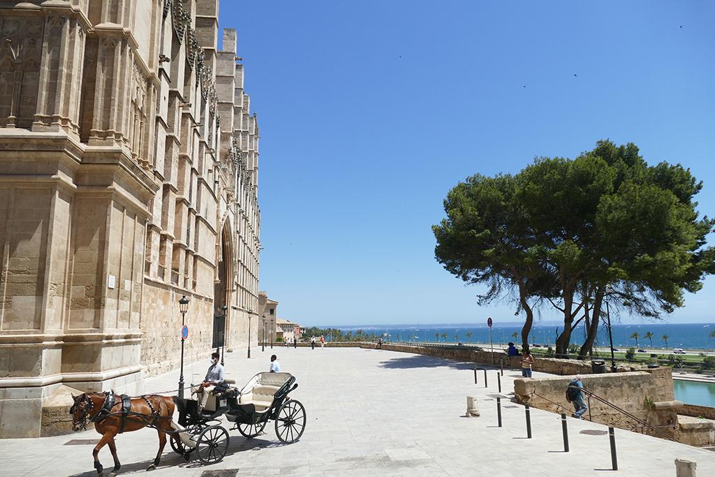 Going around the Basílica de Santa María en Palma by horse and carriage