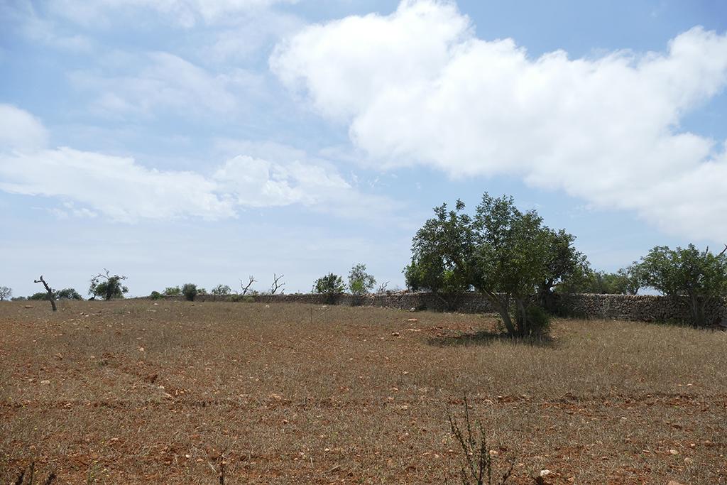 Hinterland at Cala Santanyí,