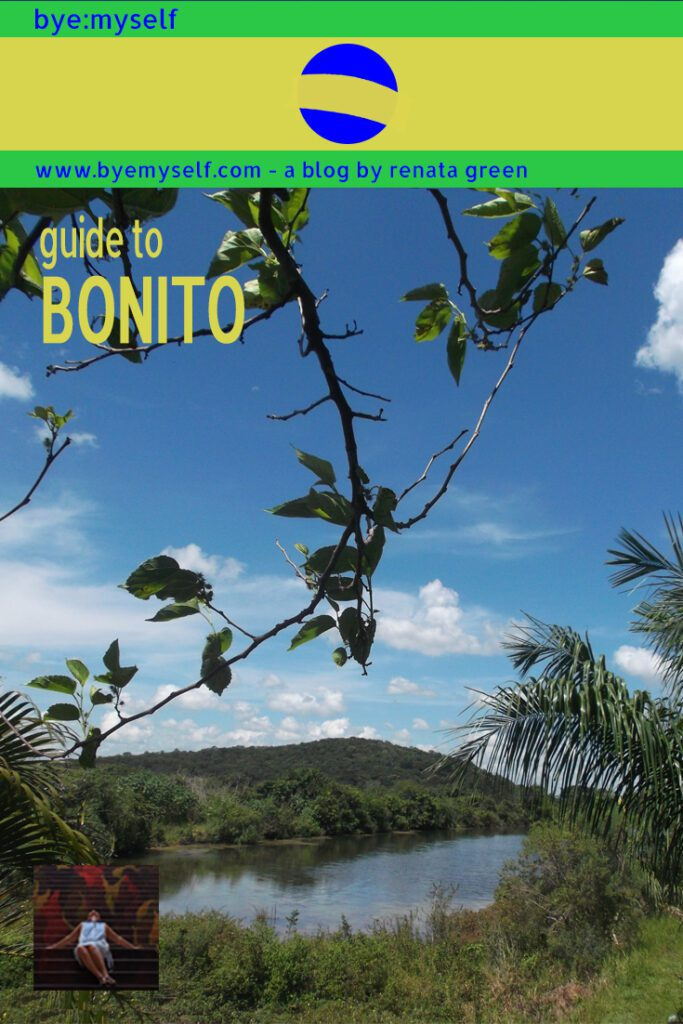 Pinnable Picture on the Post on Guide to BONITO - where nomen est omen, definitely