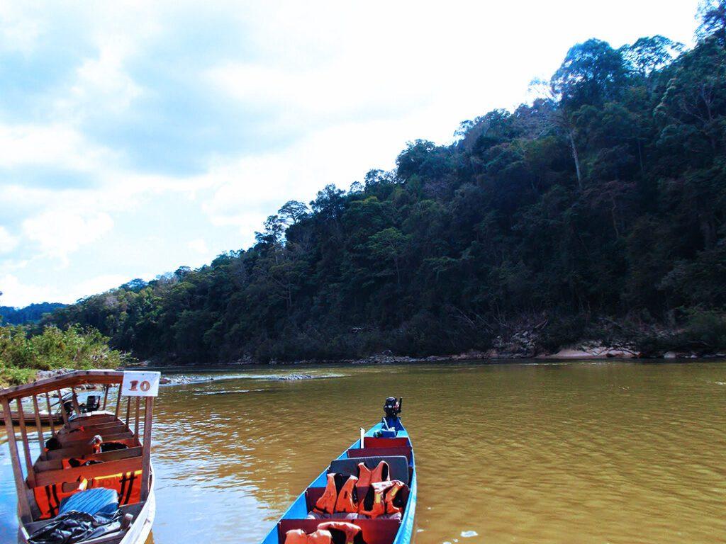Tembeling River in the Taman Negara